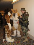 Furries with a Stargate trooper